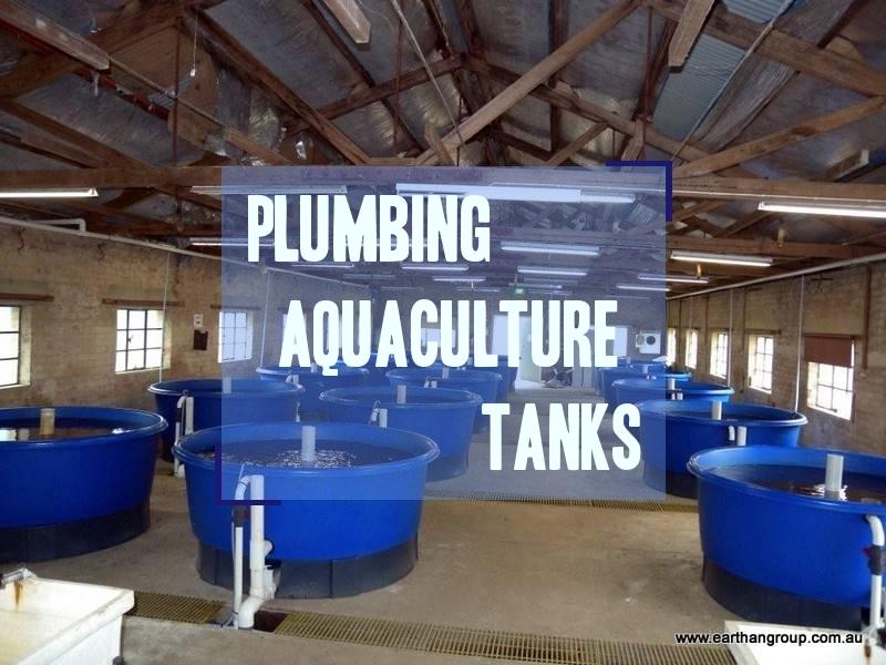 Plumbing aquaculture tanks aquaponic and aquaculture for Aquaculture fish tanks